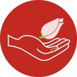Hand-Icon~ (1)